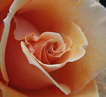 Friday I'm in Love.... by Mary Trebilco
