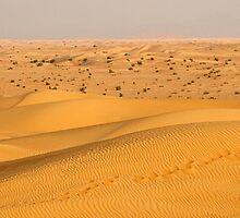 Dubai Desert by Sekans