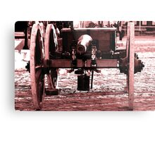 Resting Cannon Metal Print