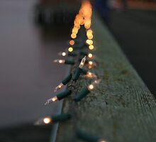 Twinkle lights by Anne Murphy