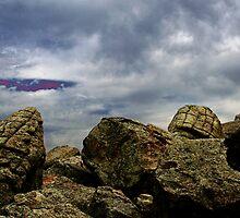 Eerie landscape by Anne Murphy