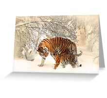 Tigers in snow  Greeting Card