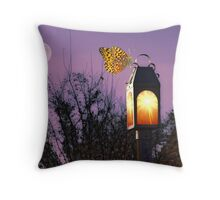 Attracted To Light Throw Pillow