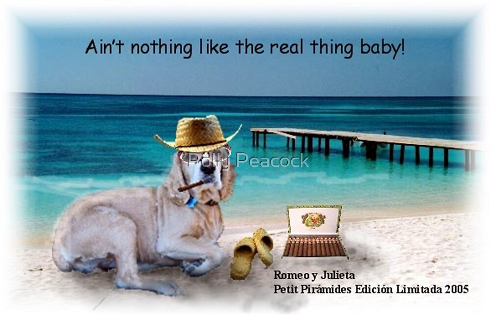 Ain't Nothing Like the Real Thing Baby! by Polly Peacock