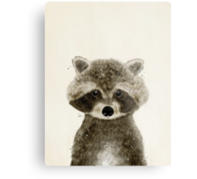 little raccoon Metal Print