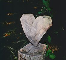 Wooden Heart by Debja