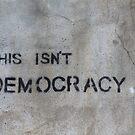 This Isn't Democracy by ReidOriginals