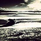 Winter in Marina di Bibbona beach by gluca