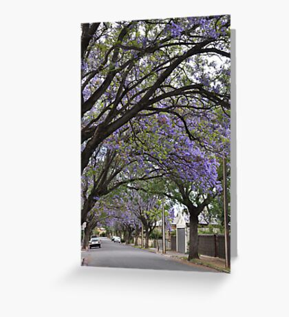 Jacaranda Streetscape Greeting Card