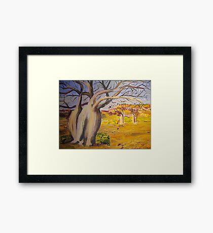 Dancing boabs ~~Australia Framed Print