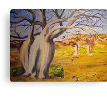 Dancing boabs ~~Australia Canvas Print