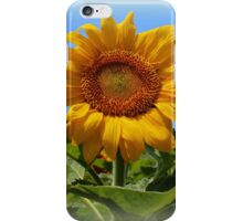 Sunflower Sunshine iPhone Case/Skin