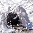 Sea Foam by Susie Peek
