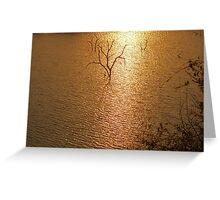 """SILHOUETTES IN GOLD"" SETS OF TWO   Greeting Card"