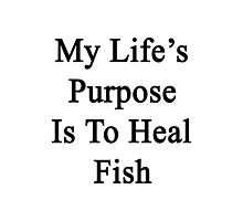 My Life's Purpose Is To Heal Fish  Photographic Print