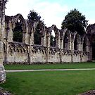 Ruins of St Mary's Abbey by Trevor Kersley
