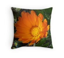 Bright flower in the mountain  Throw Pillow