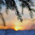 Sunset Doesn't Wait by AbigailJoy