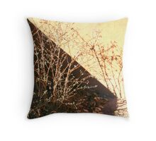 Shadows in Play Throw Pillow