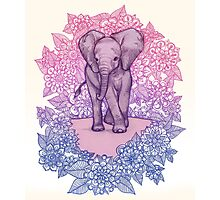 Cute Baby Elephant in pink, purple & blue Photographic Print