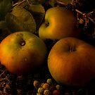 Bramleys and Blackberries by Gazart