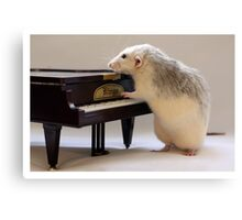 My new piano! Canvas Print