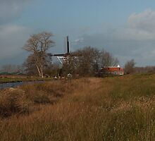 "Mill "" de Reiger "". by Minne"