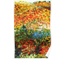 Lovely Flowers Along The Path Poster