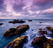 Lilac Storm by Ken Wright