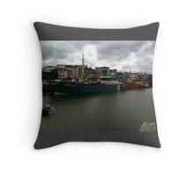 Wexford Port Throw Pillow