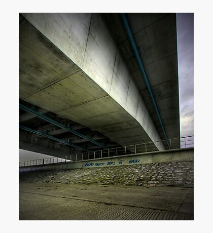 Fly over Photographic Print
