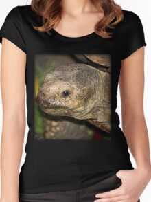 Old Tortise Women's Fitted Scoop T-Shirt