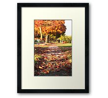 Autumn Path in Orange Framed Print