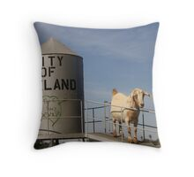 City of Weeland Throw Pillow