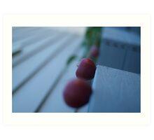 Apples in perspective 2 Art Print