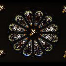 Rose Window at St Mary's Catholic Church, Bairnsdale Victoria by Bev Pascoe