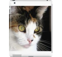 Pretty in Calico iPad Case/Skin