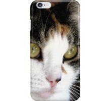 Pretty in Calico iPhone Case/Skin