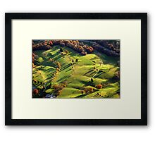 Back 9 Framed Print