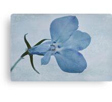 Blue Lobelia Macro Metal Print