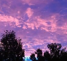 Gorgeous Sunrise in Thomasboro, IL by natureartbybeth