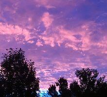Gorgeous Sunrise in Thomasboro, IL by natureartbybeth