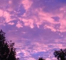 Gorgeous Sunrise in Thomasboro, IL Sticker