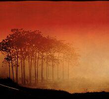 Mist by pukkamaru