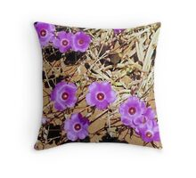 Red centered Parakeelia..native plants series Throw Pillow