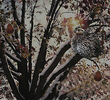 And a partridge in a pear tree .... by Judi Taylor