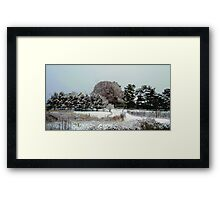 Snow !!!!  For Mike and his new camera .. :) Framed Print