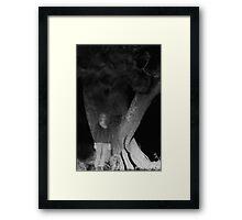 The Tree Sees Through Me Framed Print