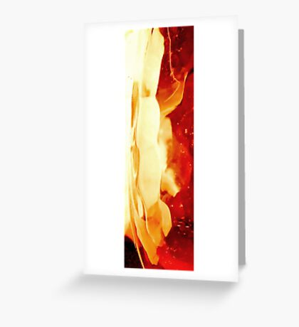 a fraction of light Greeting Card