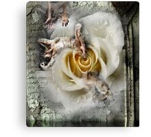 broken love Canvas Print